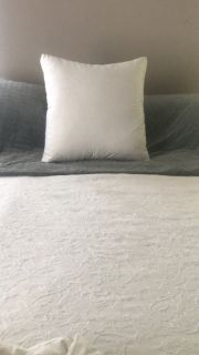 """Pottery Barn - Luxury Down """"Statement"""" Pillow // Retails for $199"""