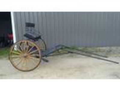 Horse Cart Custom Exercise Cart wHickory Carriage Wheels