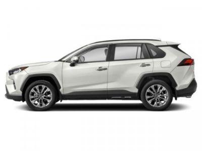 2019 Toyota RAV4 Limited (Blizzard Pearl)
