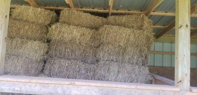 Hay - For Sale Classifieds in Bullard, Texas - Claz org