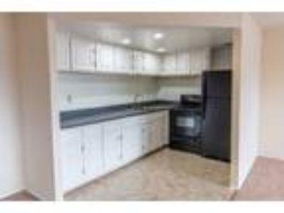 Aspen Falls Apartments - Three BR, One BA