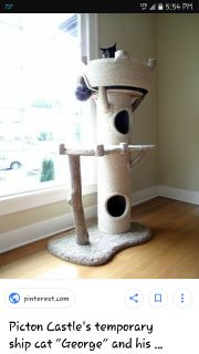 Looking for a cheap cat tower for my boyfriend. He got a kitten and its part monkey he is always climing everything