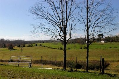 38+/- Acres Beautiful Rolling Hills A MUST SEE