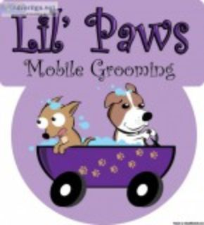 Affordable Mobile Dog Grooming