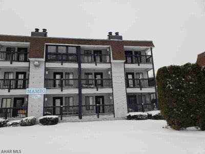1109 Mambo Blue Knob Claysburg, 1st-floor fully-furnished