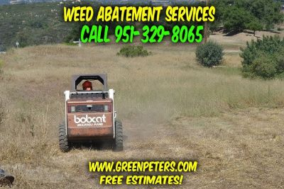 Affordable Weed Abatement & Weed Mowing Services. Call Us Today