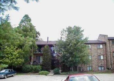 7222 Creekview Drive #12 Cincinnati Two BR, Third floor condo
