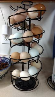 Chicken Eggs - free range/organic