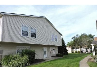 3 Bed 1.5 Bath Foreclosure Property in Cortland, OH 44410 - Ivy Hill Cir Unit C