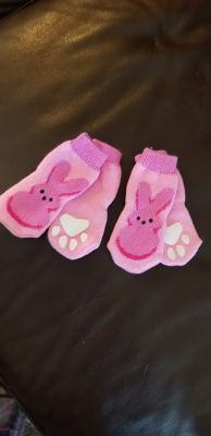 Small Dog Socks - Used one time