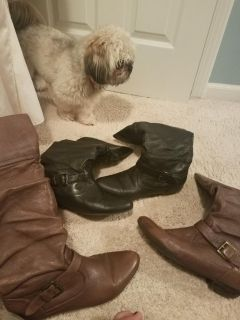Madden boots. 2 for $15 or $10 each
