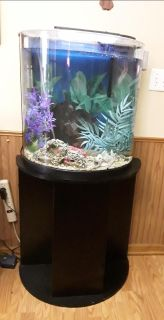 20 gallon half moon glass Aquarium and stand. Complete fish tank all set to go. Heater,bubbler, filter, many accessories.Sits flat to wall