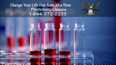 Phlebotomy Training in 4-weeks