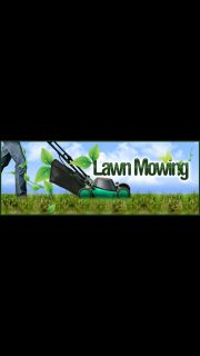 Do You Need Lawn Services?