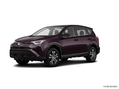 2018 Toyota RAV4 XLE (Black Currant Metallic)