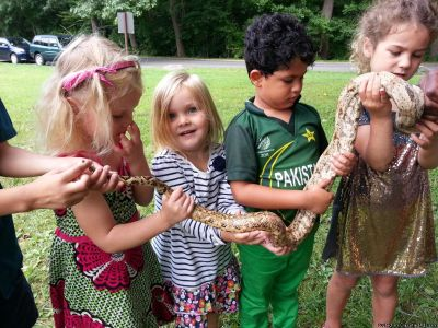 We Bring the Reptile Show to YOU!