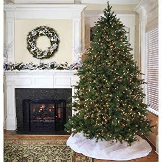 Family looking for a prelit Christmas tree