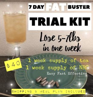 Fat Blaster Trial Kit with Meal Plan & Shipping