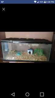 Empty 40 gallon breeder tank with screen lid