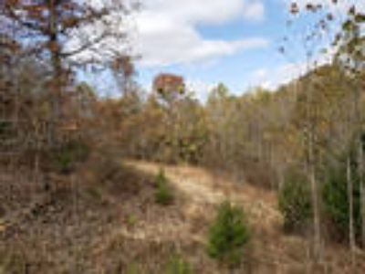 Missouri Ozarks 12 Ac. Power/Tel/Hardwoods/Near Branson