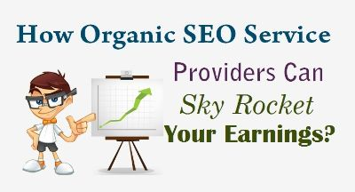 How Organic SEO Service Providers Can Sky Rocket Your Earnings ?
