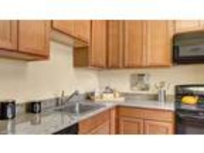 Accolade Apartment Homes - 3 BR 2 BA (E)