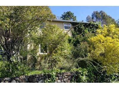 Preforeclosure Property in San Rafael, CA 94901 - Robert Dollar Scenic Drive Aka 17 Robert Dollar Dr
