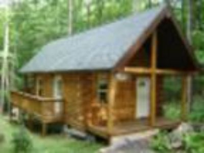 Mountain Creek Cabins - Cabin
