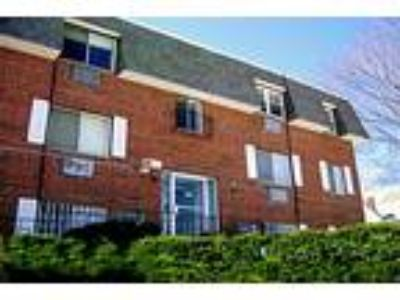 433-439 Willard Street Apartments - 1 BR