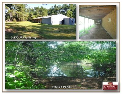 Dirty Branch Road 29.69 Acres-Land For Sale-Myrtle Beach-Keystone Commercial Realty