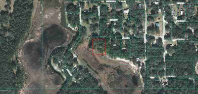 0 SE 96th Place Ocklawaha, Waterfront lot situated in a