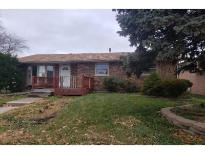 3 Bed 1 Bath Preforeclosure Property in South Holland, IL 60473 - Kimbark Ave