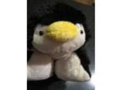 Penguin Pillow Pet Dream Light black Lite