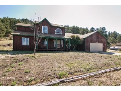 4 Bed 4 Bath Foreclosure Property in Peyton, CO 80831 - Gollihar Rd
