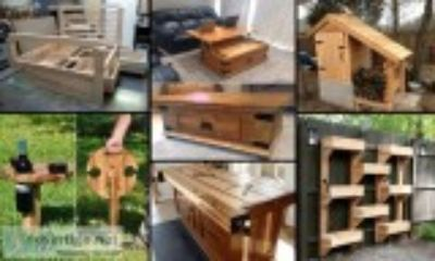 Ted s woodworking