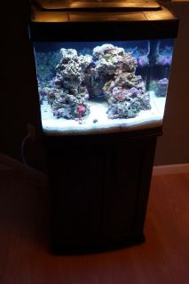 30 Gal complete BioCube