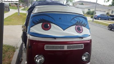Bay window windshield shed with Eyes