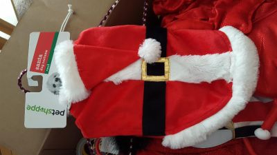Adorable Santa suit dog costume - size small