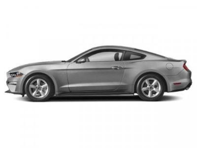 2019 Ford Mustang EcoBoost (Ingot Silver Metallic)