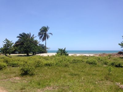 Want to trade beach view lot in Honduras for 66, 67 Chevy II