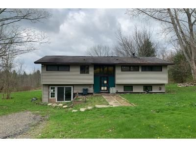 3 Bed 1 Bath Foreclosure Property in Ithaca, NY 14850 - Snyder Hill Rd