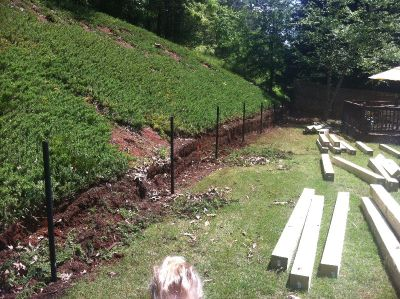 JMStreeremoval & landscaping . Inc 678-294-6083