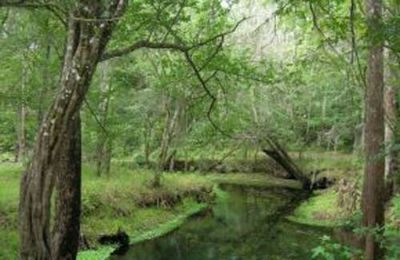Land for Development in Keystone Heights, Florida, Ref# 1003962
