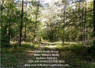 $275,000, 23428 Edwards Rd. Land for Sale in Zachary, LA