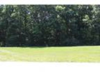Charleston Real Estate Land for Sale. $45,000 - Emily Floyd of [url removed]