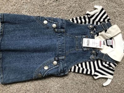 NWT Gymboree girl size 3 outfit