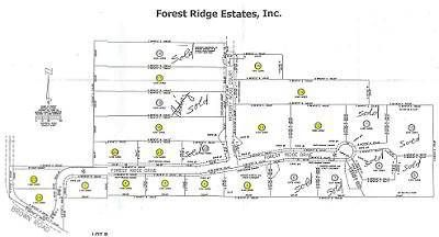 23 Forest Ridge Drive Oxford Township, Beautiful wooded