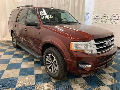 2015 Ford Expedition (Bronze Fire Metallic)