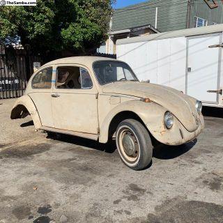 1968-1969 Volkswagen Beetle Classic - parts car