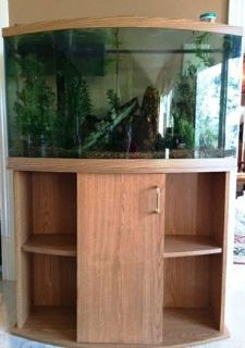 45 gallon bow front aquarium